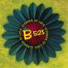 B-52'S - LP/SUMMER OF LOVE